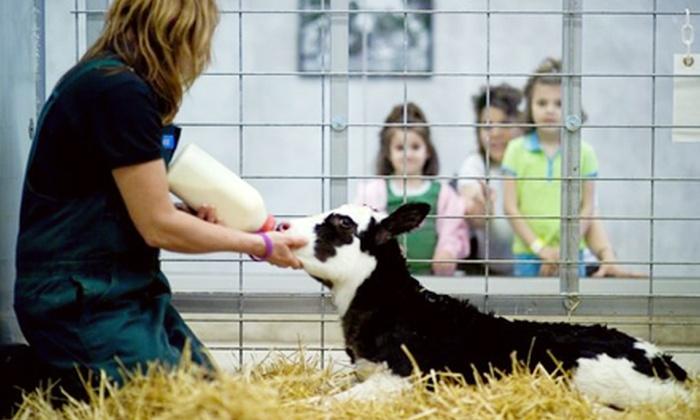 Fair Oaks Farms - Fair Oaks: Dairy Adventure Tour for Two or Four at Fair Oaks Farms (Up to 54% Off)