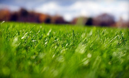 Lawn Doctor thanks you for your loyalty - Lawn Doctor in Creve Coeur