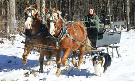 Group Sleigh or Wagon Ride for Two or Four, or Private Ride for Four from Cornerstone Ranch (Up to 54% Off)