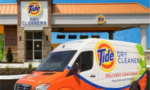 Tide Dry Cleaners: Dry Cleaning and Preservation for a Wedding Gown from Tide Dry Cleaners Twin Cities (25% Off)