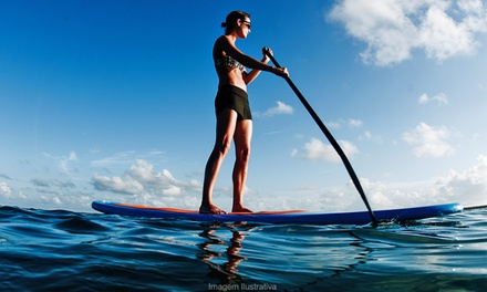 $159 for Standup Paddleboard Tour for Two with Harvest Celebration at Napa Valley Paddle ($319 Value)