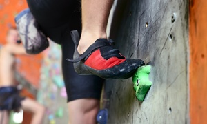Six Weeks Of Unlimited Bouldering For One Or Two At Vertical Extreme (58% Off)