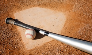 Excel Baseball Training - James Sims: $12 for $35 Worth of Baseball Lessons — Excel Baseball Training