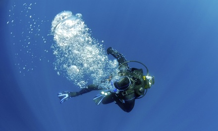 No Experience or Refresher Scuba Dive for One, Two, or Four from Banzai Divers Hawaii (52% Off)