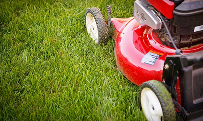 One in All Griming - Tampa Bay Area: Three Weeks of Lawn Mowing for a Large or Small Lawn or One Lawn-Care Session from One in All Griming (Up to 51% Off)