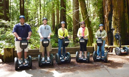 $49 for a Russian River Winery Deluxe Segway Tour from Segway of Healdsburg ($99 Value)
