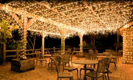 Fairy LED Holiday String Lights from AED 39 (Up to 61% Off)