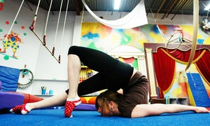 Wonderful World of Circus: Two Introductory or Intermediate Circus-Arts Classes for One or Two at Wonderful World of Circus (Up to 72% Off)