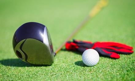 Golf-Auffrischungstag inkl. Trainer u. Ganztages-Greenfeefür Vier, Sechs od. Acht bei Konzept Golf (bis zu 65% sparen*)