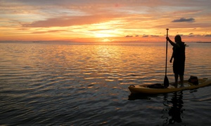 Florida Eco-Adventures, LLC: Three- to Four-Hour Guided Kayaking Tour for One or Two at Florida Eco-Adventures, LLC (Up to 54% Off)