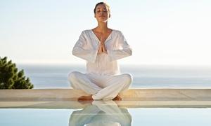 Blue Oasis Yoga And Holistics: 10 Yoga Classes at Blue Oasis Yoga and Holistics Center (70% Off)