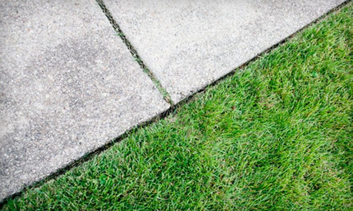 Eazy Breezy Purifications - Charlotte: Clear-Coat Sealant for a Driveway Up to 1,000 or 2,000 Square Feet from Eazy Breezy Purifications (Up to 84% Off)