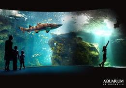 Aquarium La Rochelle: 2 entrées Adultes « Visite libre », avec en option entrées Enfants « Visite libre » dès 26,90€ à l'Aquarium La Rochelle