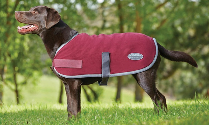 "22"" Weatherbeeta Fleece Dog Coat: 22"" Weatherbeeta Fleece Dog Coat"