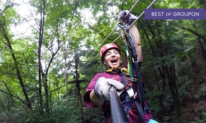 Adventures on the Gorge: Two Zipline Tours and Two-Night Cabin Stay at Adventures on the Gorge (Up to 60% Off). Three Options Available.