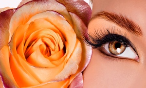 Behnosh Day Spa: Five Threading or Waxing Sessions for the Lip, Eyebrow, or Full Face at Behnosh Day Spa (Up to 54% Off)