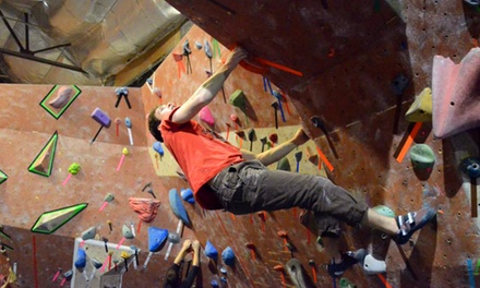 Introductory Rock-Climbing Class for One, Two or a Family of Up to Four at Philadelphia Rock Gyms (Up to 53% Off)