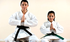 Southlake Taekwondo & Karate for Kids: One or Two Months of Unlimited Karate Classes at Southlake Taekwondo & Karate for Kids (Up to 68% Off)