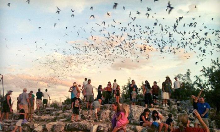 Frio Bat Flight - Concan: Bat-Flight Tour for Two or Four from Frio Bat Flight in Concan (Up to 54% Off)