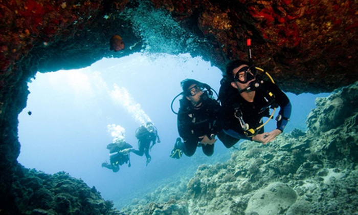 Caribbean Dreams Diving - Calgary: $139 for a PADI Open Water Referral Course with Pool Dives ($289 Value)