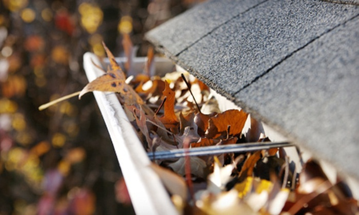 Roof Care Group - Atlanta: $79 for Full-House Gutter Cleaning from Roof Care Group (Up to $199 Value)