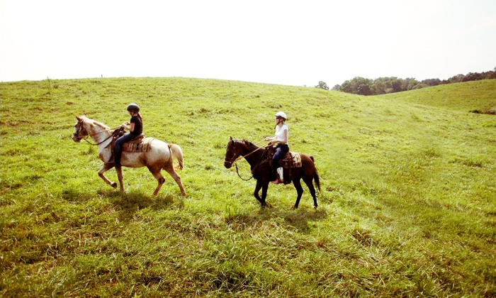RG Horsemanship - Adairsville: Trail Ride for Two, or Horsemanship Lesson with Optional Trail Ride for One at RG Horsemanship (Up to 80% Off)