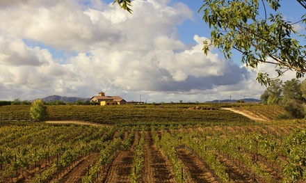 Wine Tour and Tasting for Two or Four at Lorimar Vineyards and Winery (51% Off)
