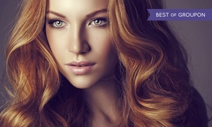 STUDIO 31 Hair Lab: Haircut with Option for Color or Highlights at STUDIO 31 Hair Lab (Up to 66% Off). Three Options Available.