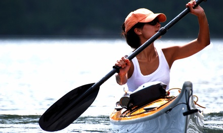 Single- or Double-Kayak Rentals or Tour from Vancouver Water Adventures (Up to 59% Off). Six Options Available.