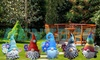 Up to Five Funny Beard Garden Gnomes
