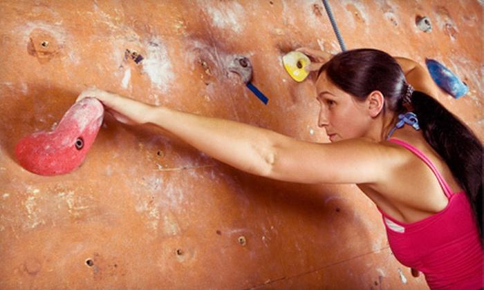 Niagara Climbing Center - North Tonawanda: Indoor Rock Climbing for Two, Three, or Four at Niagara Climbing Center (Up to 55% Off)