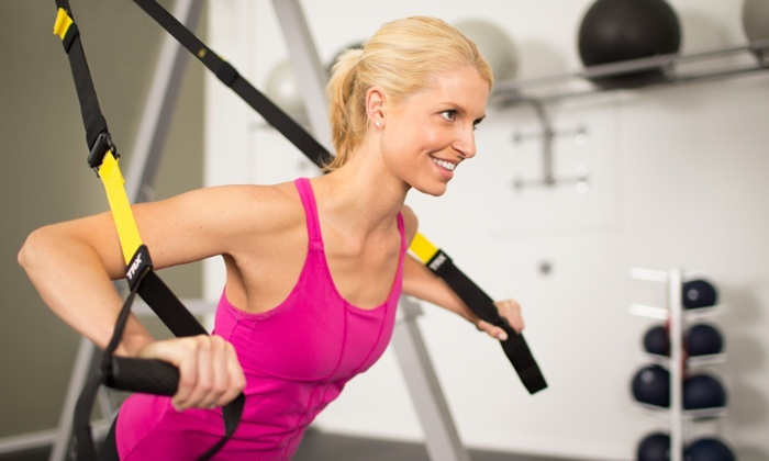 Synergy Group Training - Windsor: 10 Drop-In TRX Suspension-Training Classes or Two Months of Unlimited Classes (Up to 52% Off)