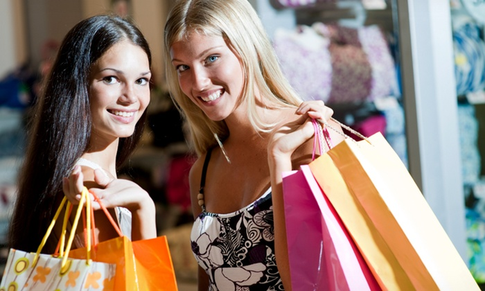 1 Day In The Life - Riverside: $247 for $550 Groupon towards Personal Shopping Services