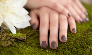 Huntsville Nails: Two Shellac or Basic Manicures at Huntsville Nails (Up to 60% Off)
