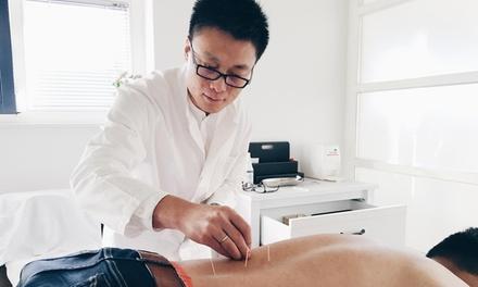 1x, 2x oder 3x 30 Minuten Akupunktur inkl. Moxibustion und Anamnese bei Heilpraktiker Hai Jin (bis zu 79% sparen*)