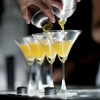 95% Off Online Bartender Training
