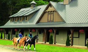 Bright's Creek Equestrian Center: Horseback-Riding Lessons or Ride at Bright's Creek Equestrian Center (Up to 40% Off). Four Options Available.