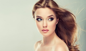Carini Salon: Haircuts, Color, and Texture Treatments at Carini Salon (Up to 52% Off). Five Options Available.
