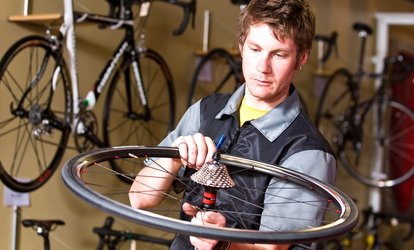 image for Basic, Mid-Level, or Premium Bike Tune-Up at Local Bicycle (Up to 58% Off)