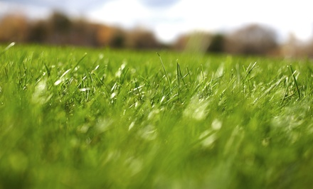 Lawn Seed, Fertilization, Weed Killer, and Optional Aeration from Berrett Pest & Lawn Care (Up to 75% Off)