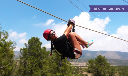 $55 for a Zipline Tour with Nine Lines from Royal Gorge Zip Line Tours ($98 Value)