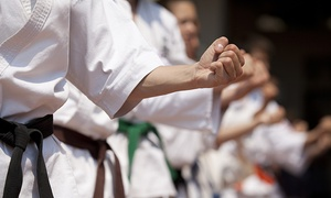 Oom Yung Doe NW - Kirkland: One Month of Unlimited Martial Arts Classes for One or Two Children at Oom Yung Doe NW - Kirkland (Up to 90% Off)