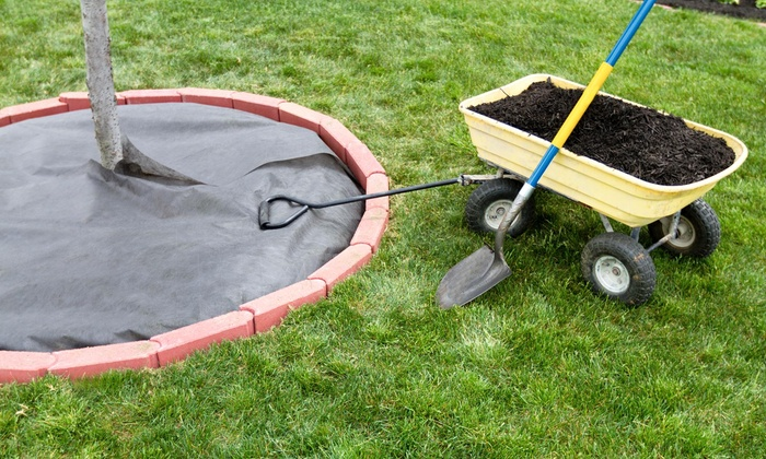 Ground Forces Landscaping - Charlotte: $83 for $150 Groupon — Ground Forces Landscaping