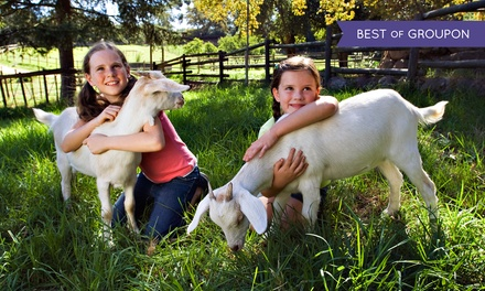 Animal Petting Farm Visit for Two or Four at Green Meadows Petting Farm in Waterford (Up to 47% Off)