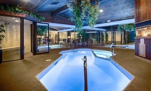 Romantic Suites in Suburban Chicago at Sybaris Pool Suites, plus 6.0% Cash Back from Ebates.