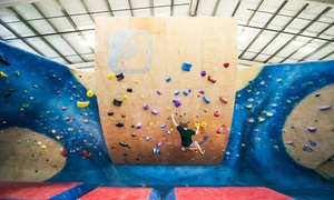 Central Rock Gym: Climbing Pass or One Month of Unlimited Climbing, Yoga, and Fitness Classes at Central Rock Gym (Up to 56% Off)