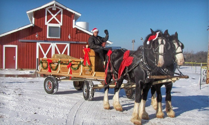 Shires For Hire - Springfield: $25 for a Horse-Drawn Carriage Ride with Santa Claus for Up to Four from Shires For Hire ($50 Value)