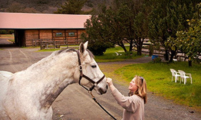 Mark West Stables - Santa Rosa: One-Week Horseback-Riding Day Camp or Two-Hour Pony Adventure at Mark West Stables in Santa Rosa (Half Off)