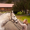 Half Off at Mark West Stables in Santa Rosa