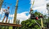 Adventura, LLC. - Aerial Adventure Park: $49  for an Aerial Adventure-Park Visit and a Tour of Redhook Brewery from Adventura ($100 Value)